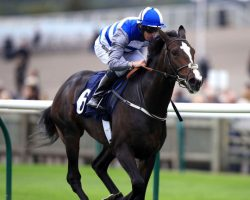 Eminent Can Emulate His Famous Dad In The 2,000 Guineas