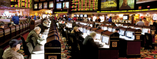 Who Gambles More? Men or Women?