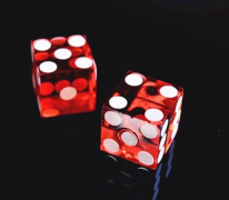 Taking a Look into Casino Utan Spelpaus